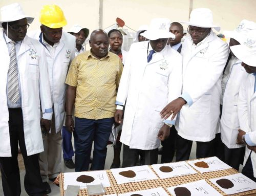 Official Launch of Mbogo Valley Tea Factory